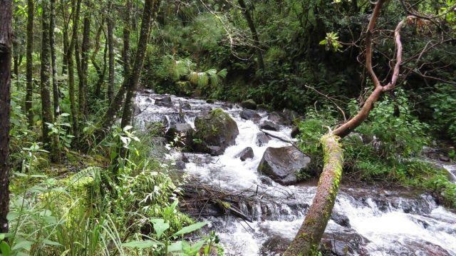 Parque Ecoturístico Dos Aguas Tlalmanalco