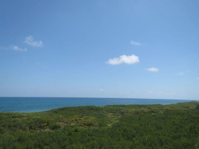 Parque Nacional Isla Contoy Biodiversidad