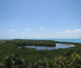 Parque Nacional Isla Contoy La Isla de los Pájaros