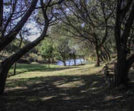 Parque Recreativo El Huariche Huasca de Ocampo