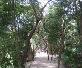 Parque Xel-Há Riviera Maya Reserva Natural