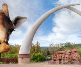 Parque Zoológico de León Guanajuato