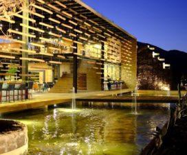 Pet Friendly Hotel Agua de Vid & SPA Valle de Guadalupe