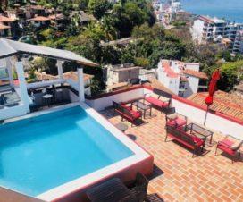 Pet Friendly Hotel Amaca Puerto Vallarta