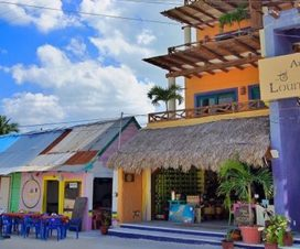 Pet Friendly Hotel Arena Holbox