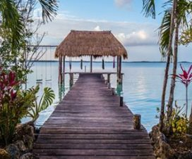 Pet Friendly Hotel Béke Wayak Bacalar