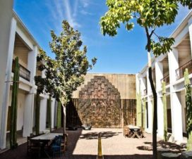 Pet Friendly Hotel Boutique Azul Oaxaca