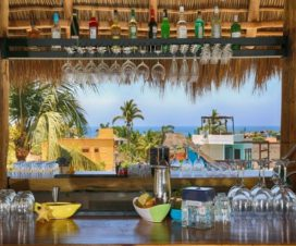 Pet Friendly Hotel Boutique Oz Sayulita