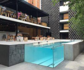 Pet Friendly Hotel Carlota Ciudad de México