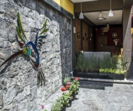 Pet Friendly Hotel Casa Aurora Santiago de Querétaro