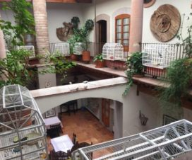 Pet Friendly Hotel del Vasco Zacatecas