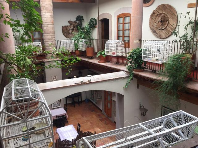 Pet Friendly Hotel del Vasco Zacatecas
