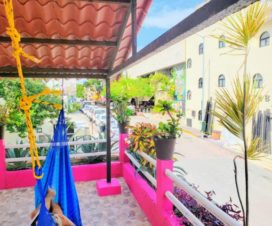 Pet Friendly Hotel D'Margo Playa del Carmen