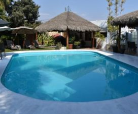 Pet Friendly Hotel Finca Chipitlán Cuernavaca