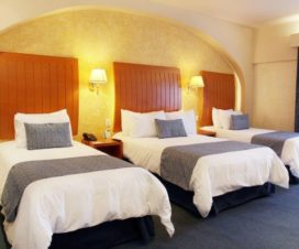 Pet Friendly Hotel Flamingo Inn Santiago de Querétaro