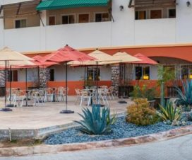 Pet Friendly Hotel Hacienda Santana Tecate Baja California