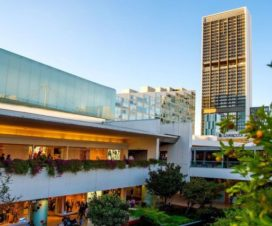 Pet Friendly Hotel Hyatt Regency Andares Guadalajara
