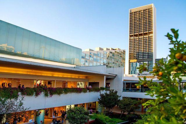 Pet Friendly Hotel Hyatt Regency Andares Guadalajara