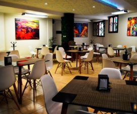 Pet Friendly Hotel Imperial Xalapa