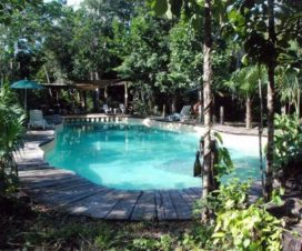 Pet Friendly Hotel Jolie Jungle Puerto Morelos