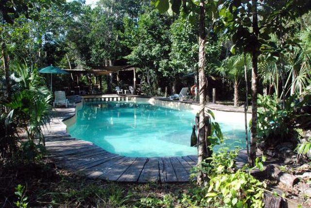 Pet Friendly Hotel Jolie Jungle Puerto Morelos