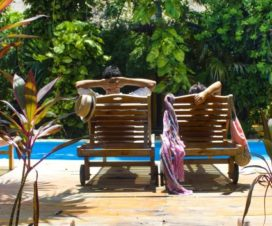 Pet Friendly Hotel Koox City Garden Playa del Carmen