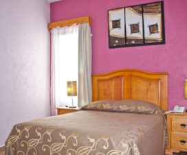 Pet Friendly Hotel La Capilla Ezequiel Montes Querétaro