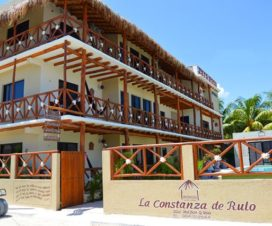 Pet Friendly Hotel La Constanza de Rulo Holbox