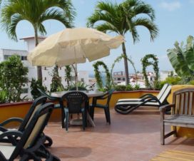Pet Friendly Hotel La Terraza Inn Puerto Vallarta