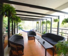 Pet Friendly Hotel Lush Hostel Sayulita Nayarit