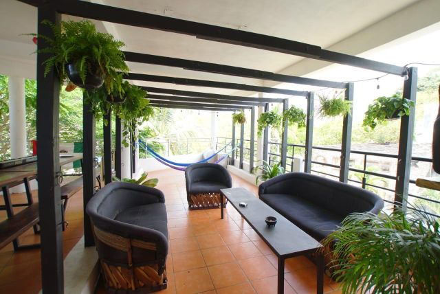 Pet Friendly Hotel Lush Hostel Sayulita Nayarit