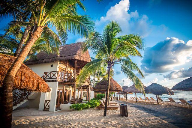 Pet Friendly Hotel Mahekal Beach Resort Playa del Carmen