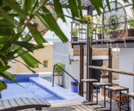 Pet Friendly Hotel Maui Suites Playa del Carmen