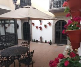 Pet Friendly Hotel New Suite Sevilla Puebla