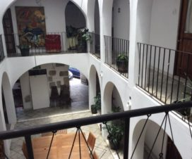 Pet Friendly Hotel Oaxacalli Oaxaca
