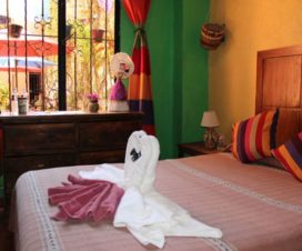 Pet Friendly Hotel Posada Don Mario Oaxaca