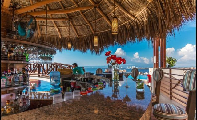 Pet Friendly Hotel Resorts by Pinnacle 220 Puerto Vallarta