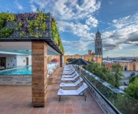 Pet Friendly Hotel Rosewood Puebla