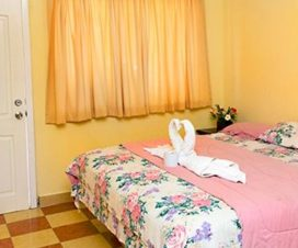 Pet Friendly Hotel San Pedro Villahermosa
