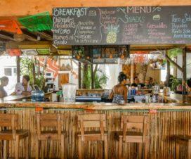 Pet Friendly Hotel Selina Puerto Escondido Oaxaca