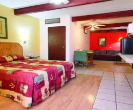 Pet Friendly Hotel Suites Kino Hermosillo