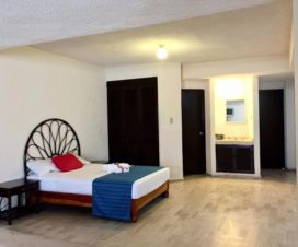 Pet Friendly Hotel Suites Magallanes Acapulco