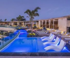 Pet Friendly Hotel Thompson Playa del Carmen