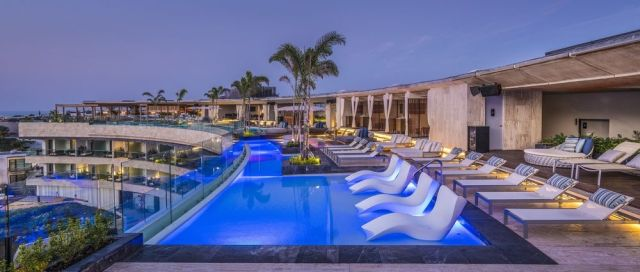 Pet Friendly Hotel Thompson Playa del Carmen