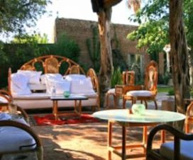 Pet Friendly Hotel Torres del Fuerte El Fuerte Sinaloa