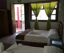 Pet Friendly Hotel Villa Amara Cuetzalan