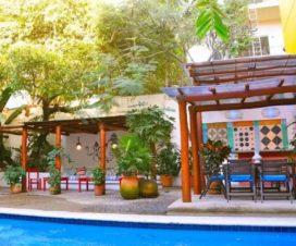 Pet Friendly Hotel Villa Petit Mercedes Puerto Vallarta