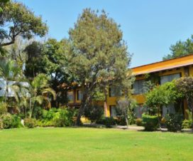 Pet Friendly Hotel Wyndham Garden Zapopan Jalisco