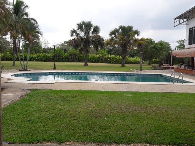 Pet Friendly Hotel y Spa Cedros Villahermosa