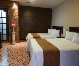 Pet Friendly Hotel & Suites Del Alba Inn Aguascalientes